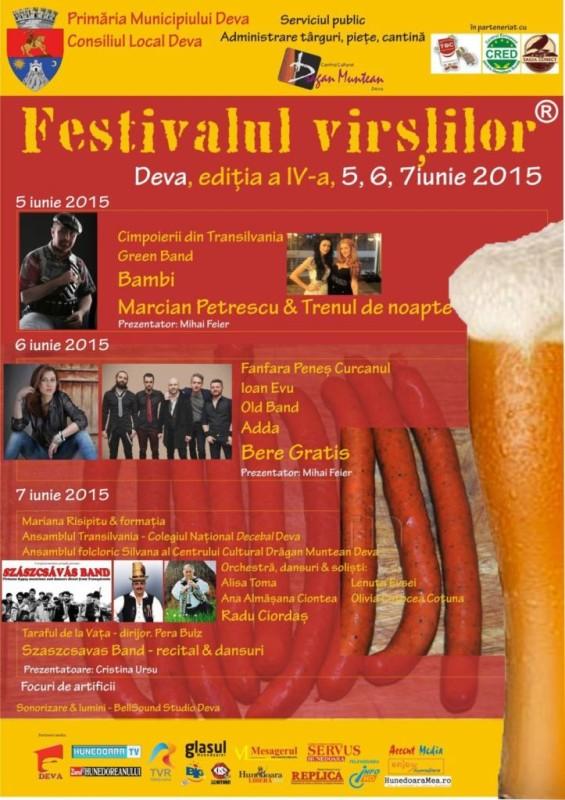 afis Festival Virsli 2015