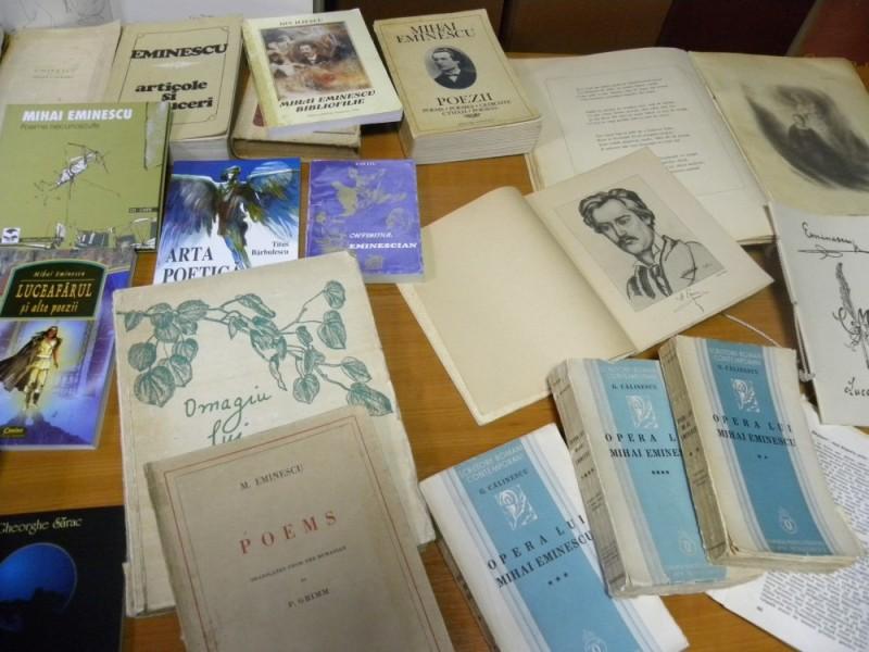 biblioteca eminescu expozitie (11)