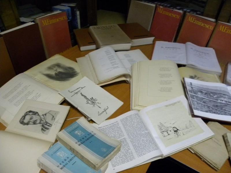 biblioteca eminescu expozitie (12)