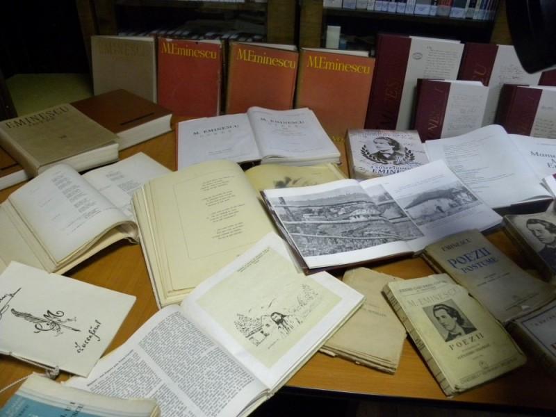 biblioteca eminescu expozitie (13)