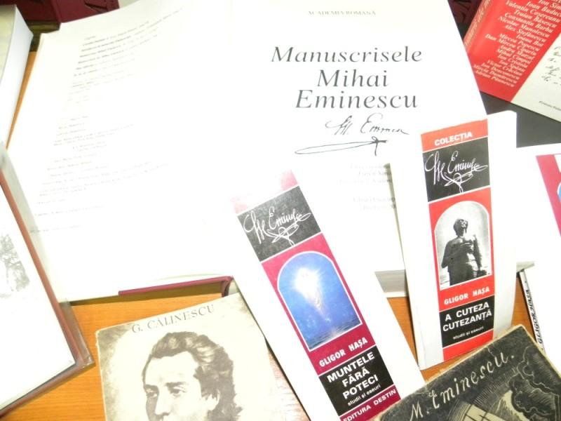 biblioteca eminescu expozitie (16)
