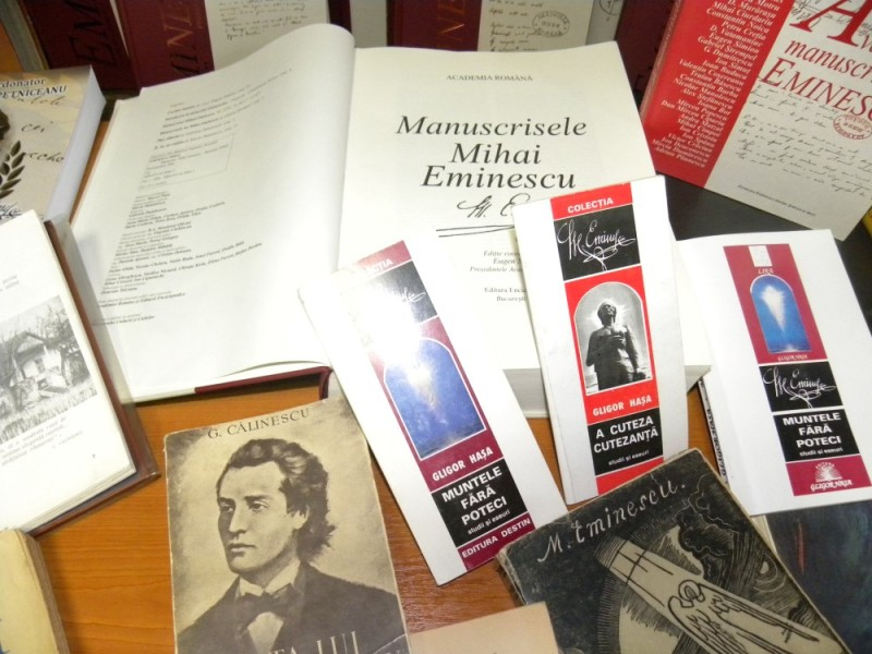 biblioteca eminescu expozitie (17)