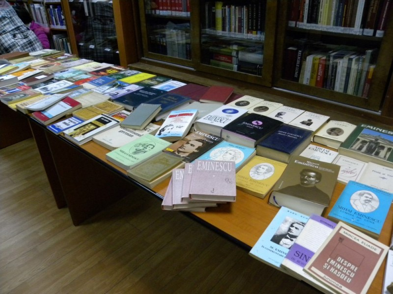 biblioteca eminescu expozitie (20)