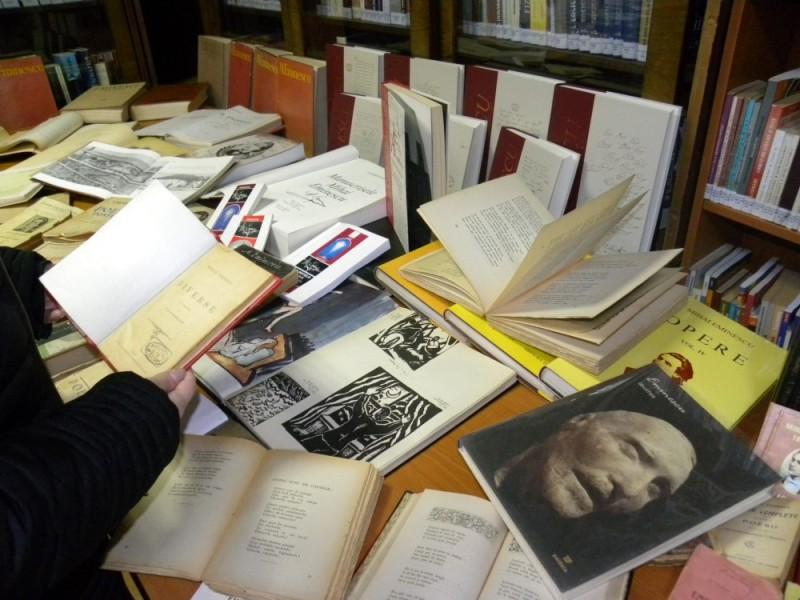 biblioteca eminescu expozitie (22)