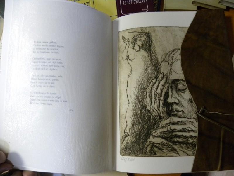 biblioteca eminescu expozitie (26)