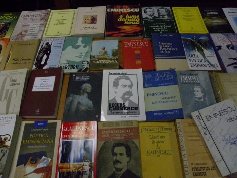 biblioteca eminescu expozitie (3)