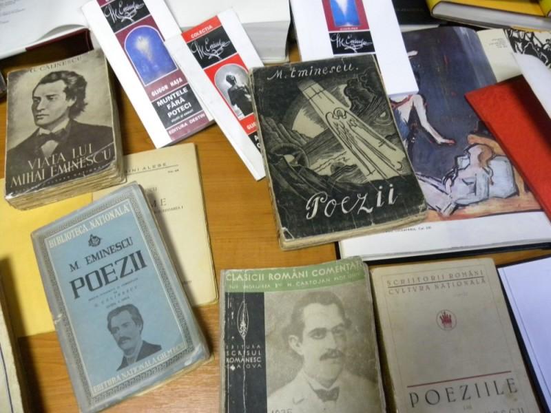 biblioteca eminescu expozitie (32)