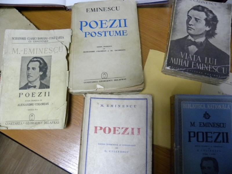 biblioteca eminescu expozitie (34)