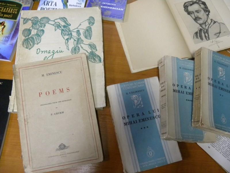 biblioteca eminescu expozitie (38)