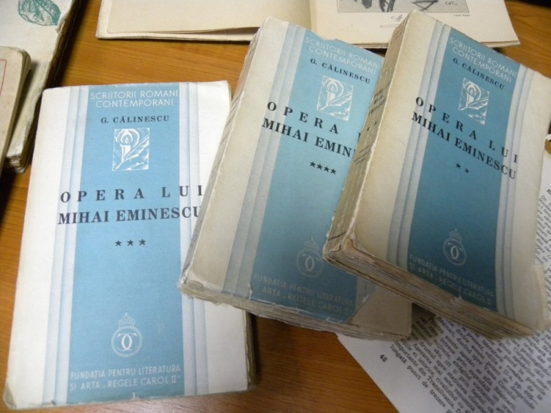 biblioteca eminescu expozitie (39)