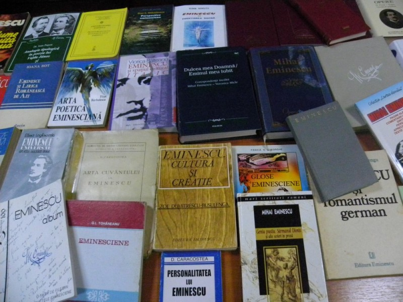 biblioteca eminescu expozitie (4)