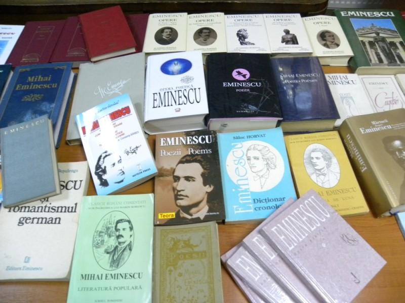 biblioteca eminescu expozitie (5)