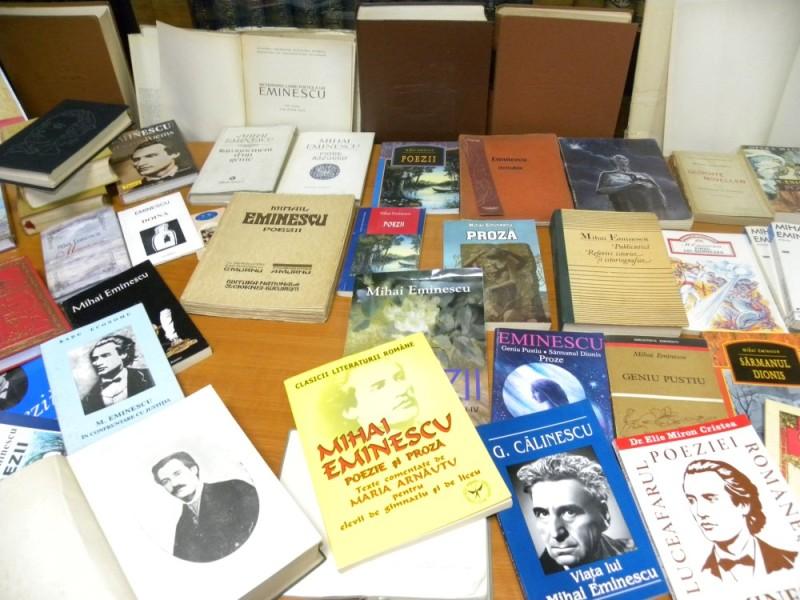 biblioteca eminescu expozitie (8)