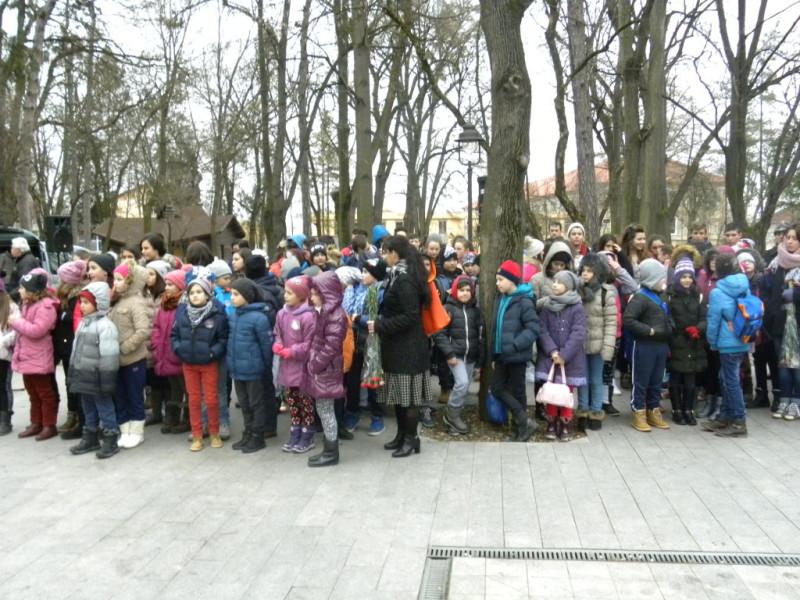 biblioteca eminsecu parc (2)