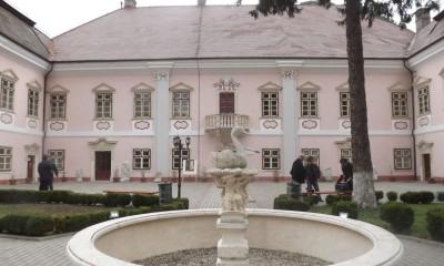 muzeu deva