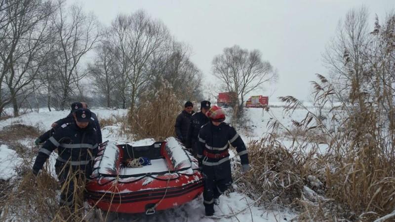 lebede salvate pompieri (2)