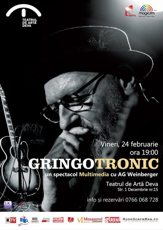afis AG Weinberger Gringotronic