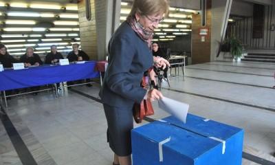 alegeri deva 02