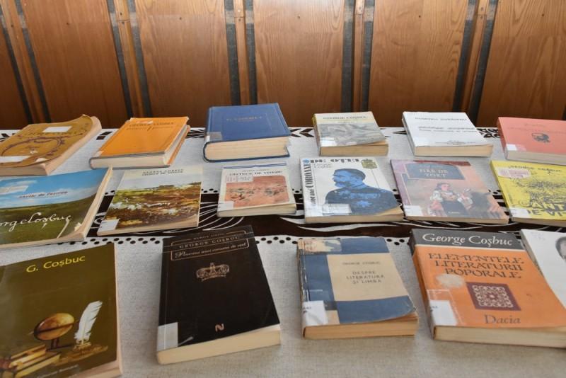 Biblioteca evocare Cosbuc (2)