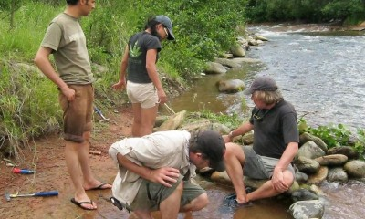 Descoperire mamifer Geoparc