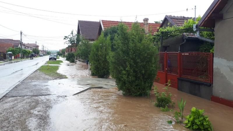 inundatii cristur (2)