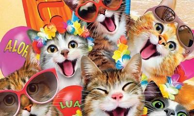 Afis Spectacol Pisici pentru pitici